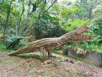 南投隱藏版侏儸紀公園 3公尺高竹暴龍遊客好驚喜
