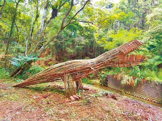 南投縣澀水森林步道以蕨類分布廣泛著稱,有「侏儸紀公園」美名,近來打造完成1座3公尺高的「竹暴龍」,相當吸睛。(摘自陳秋坤臉書)