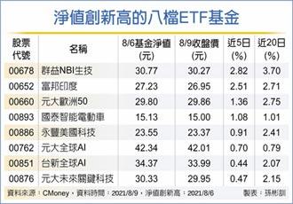 八檔原型股票ETF 淨值創新高