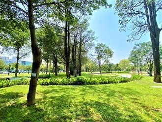 台中市公園綠地多 低密度重劃區掀綠化潮流