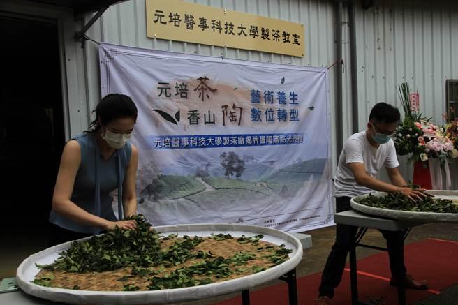 元培學生在製茶教室體驗揉茶。(元培醫大提供)