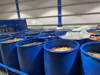 暫停廚餘養豬1個月 桃市議員點出166噸廚餘量未如期消化