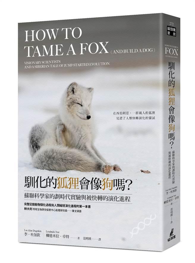 《馴化的狐狸會像狗嗎?》/貓頭鷹出版