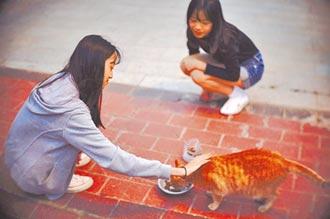 動物保護分級教育 學習愛與尊重
