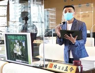 大肚山上世界級台灣百合復育 中市議員:農業局應該要繼續推動