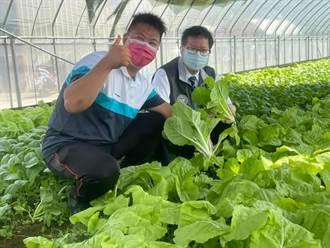 鄭文燦視察青農農場 宣傳農民紓困政策
