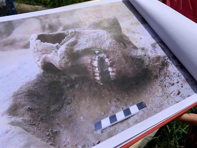 其中2具併排在葬坑內,被發現時骨骸相當完整。(呂妍庭攝)