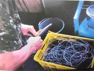 毒品慣竊偷遍果園電線終栽警手裡 果農直呼「大快人心」