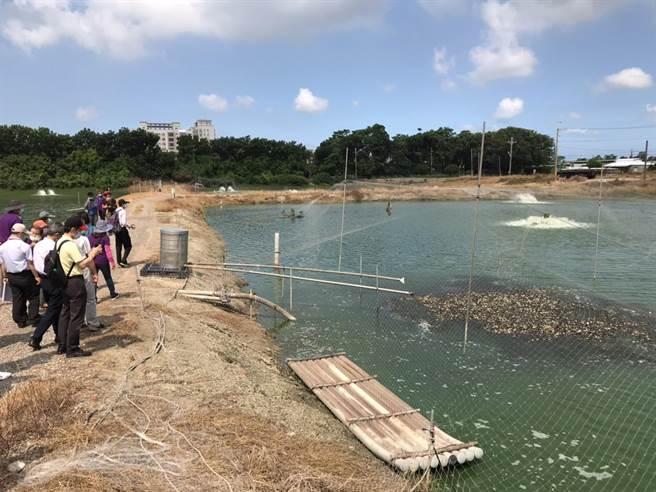 農村再生計畫審查委員現勘安西社區養殖漁業。(讀者提供/張毓翎台南傳真)