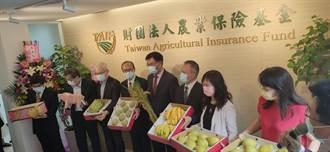 颱風天農險基金揭牌!水稻收入保險明年開辦 拚覆蓋率逾4成
