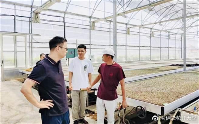 馬雲1日在浙江省平湖市現蹤,打拚輕鬆,視察自家的數位農業大棚。(圖/翻攝微博)