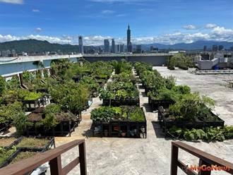 綠屋頂!田園城市創造城市價值