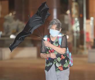 璨樹颱風來襲 新北9家百貨商場今暫停營業