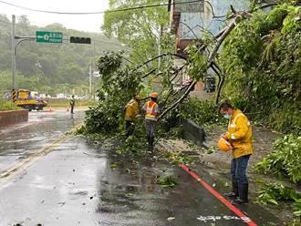 璨樹颱風來襲 基隆累計25件災情
