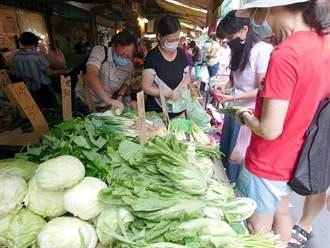 颱風未直接登陸影響買氣 蔬菜均價自8月上旬以來首跌40元以下
