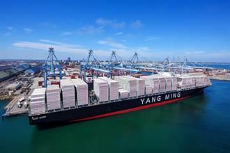 救援台灣出口 陽明再開中東加班船
