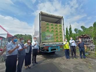 首批銷日文旦今裝櫃 今年拚50噸較去年增3倍