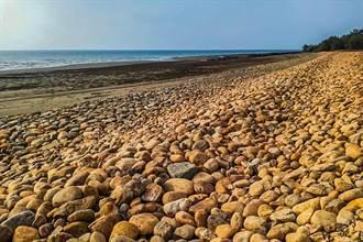 竹縣「淨灘換好禮」守護美麗海岸線 海委會指新豐海岸發現藻礁
