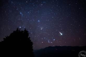 阿里山秋冬星座天文生態體驗營 報名將開跑!