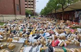 這校學生消費力超驚人 「包裹海」多到把路堵死