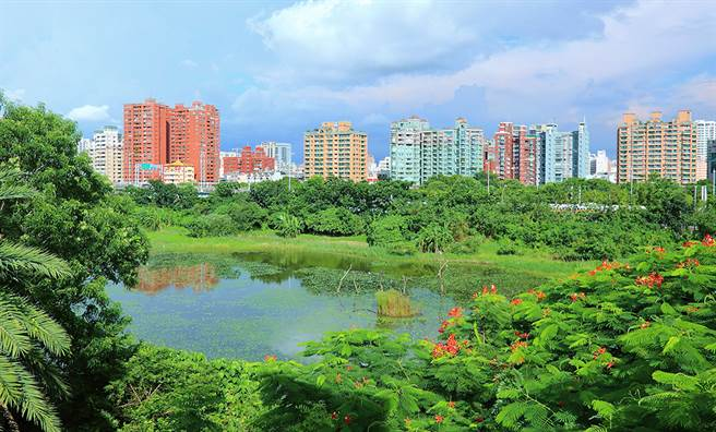 園區內設置深淺不同的水池,種植菱角、睡蓮等浮葉植物,以還歸自然、訴諸生態的自然工法打造為濕地公園。(攝影/Carter)