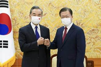 文在寅會見王毅 讚賞中方維護朝鮮半島和平