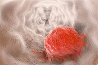 抗病毒蛋白對付愛滋病毒、伊波拉病毒 對新冠病毒也有效?