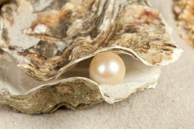 大陸一名女子吃海螺時咬到硬物,經過專家鑑定竟是價格高昂的「美樂珠」。(示意圖/達志影像)