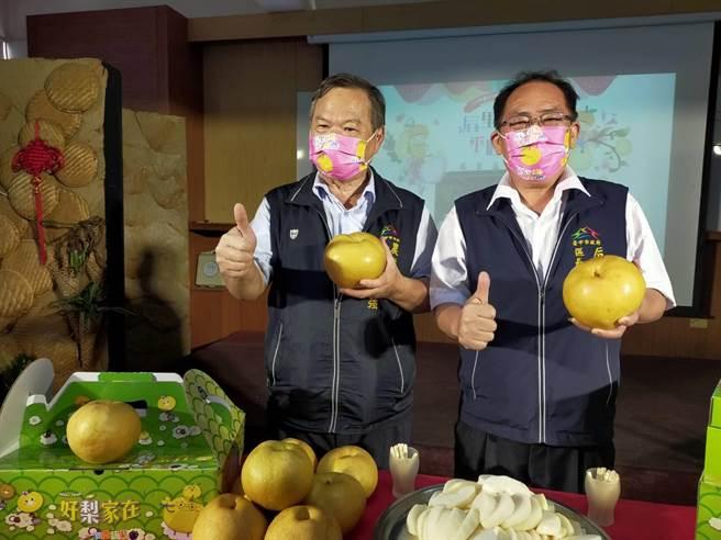 台中市農業局長蔡精強(左)、后里區長賴同一(右)共同推薦后里好梨(王文吉攝)