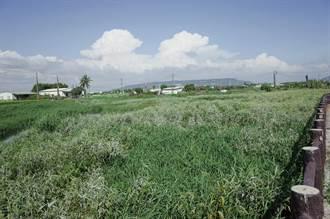路竹農地灌溉水量不足 農水署於年底啟動清淤