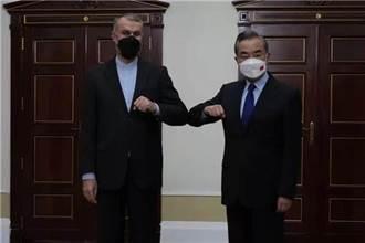 王毅會見伊朗外長:中方支持伊成為上合組織正式成員