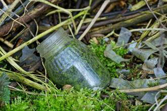花園玻璃罐傳詭異腥臭 打開嚇壞!竟是自宮證據