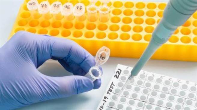 大陸新冠病毒核酸檢測再降價,單人單檢不超264元。(澎湃新聞)