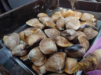 今日最健康》低脂護肝的蛤蜊 在真空包裡還活著嗎?