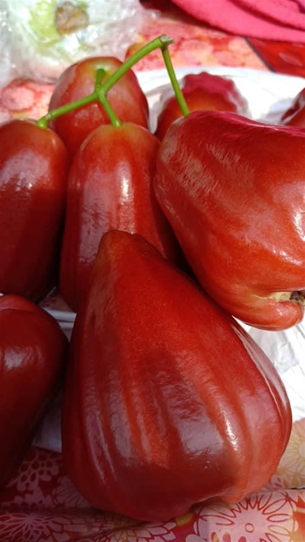 劉姓果農賣的紫蜜蓮霧果實飽滿、賣像佳,吸引一些網友上網詢問。(摘自六龜加油站蓮霧當季水果臉書/林瑞益高雄傳真)