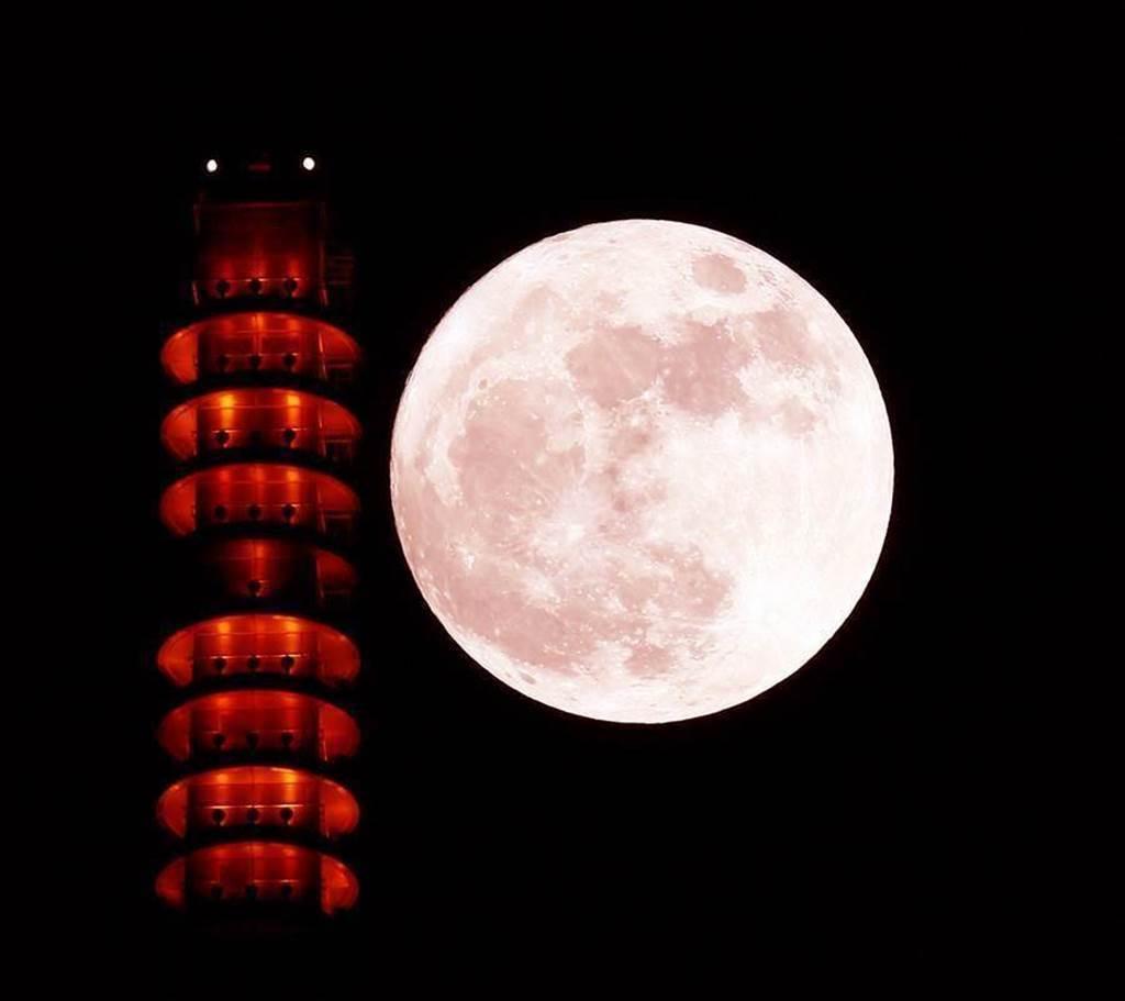 氣象局表示,過往中秋滿月大多在農曆16日,今年滿月恰逢農曆8月15日,因此今年中秋節當天是睽違8年的「真月圓」。(中時資料照)