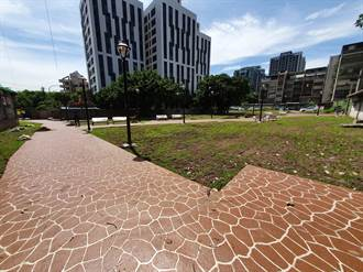 板橋蘆洲遭占公有地 化身綠美化秘境