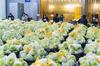農產品銷陸受阻 饒慶鈴要求中央發行台東釋迦券