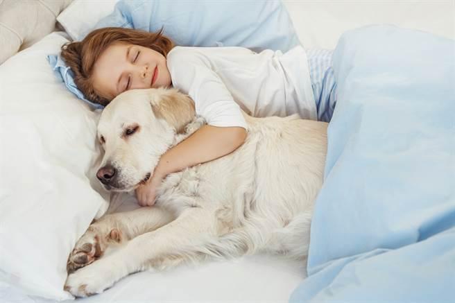 外國一名女飼主發現,自家愛犬每到晚上大家睡著的時候,就會到各個房間巡邏。(示意圖/達志影像)