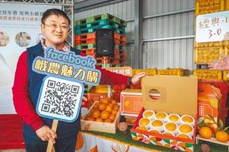 下一個柑橘?果農憂衝擊內銷價格