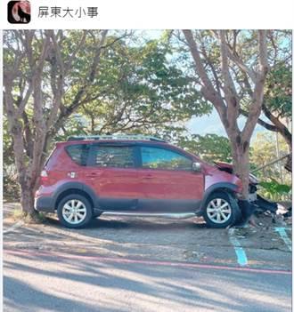 屏東三地門最強停車!車身卡2樹間 眾人驚:比賣豆腐還厲害
