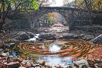 漫遊韓國麗水  愛上童話般秋景