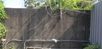 清泉崗基地圍牆鐵絲網3處遭人為破壞 民憂成國防機密漏洞