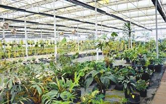 防園丁隔離 屏東保種中心設自動澆灌