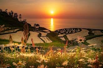 夕陽秘境!能登半島千層梯田美呆了