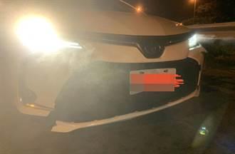 半夜國道撞到狗下車一看心涼一半 「特殊車」維修12.6萬起跳