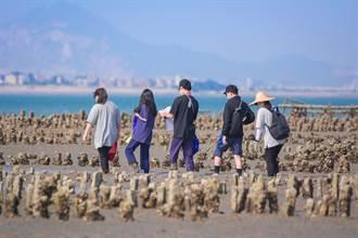 走進生態豐富的潮間帶 金管處學員體驗大地之美