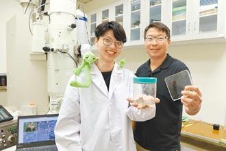 蛙類皮膚啟發 興大研發多功能抗藻塗料