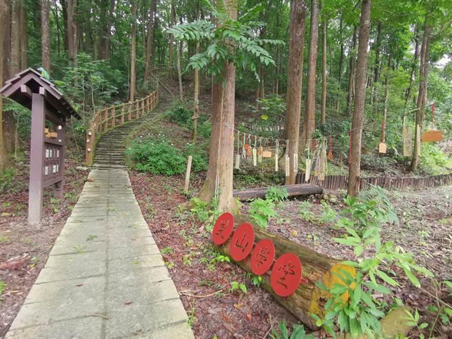 密枝社區透過步道串連桃花心木林、草坪,打造親近自然的戶外里山學堂。(劉秀芬攝)