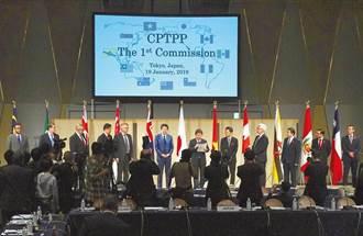 台灣以「這名稱」申請加入CPTPP 王鴻薇批:民進黨喪權辱國